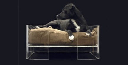 Wow Bow modern dog bed