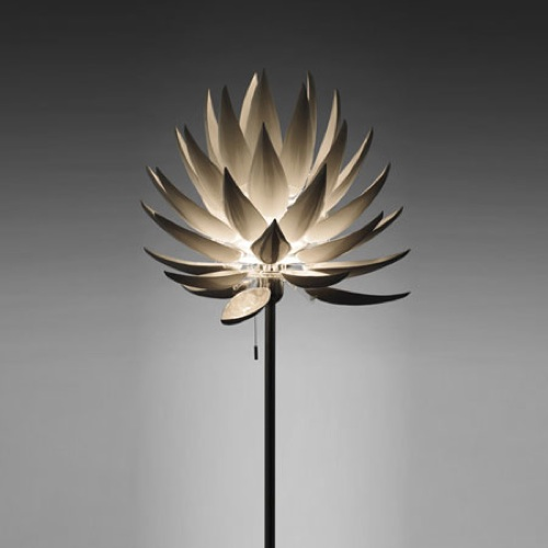 Jeremy Cole Aloe Blossom