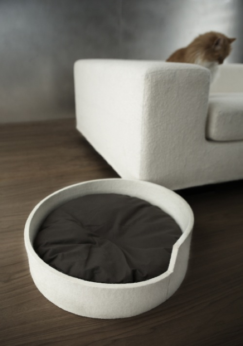Modern Pet furniture made in canada Gregory Kenny Kilowatt Studio