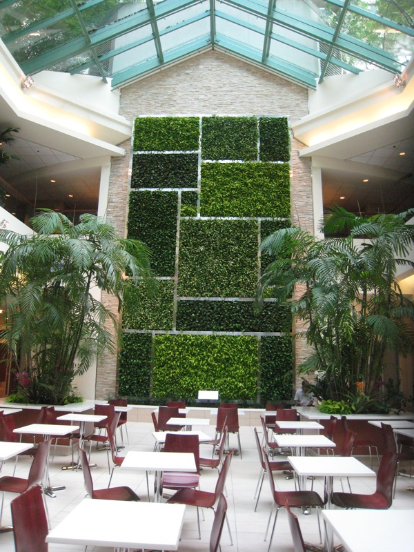 green wall living wall minto place modern ottawa sustainable ecofriendly