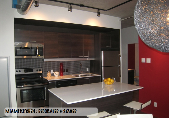 Central Condominium Modern Ottawa condo interior design