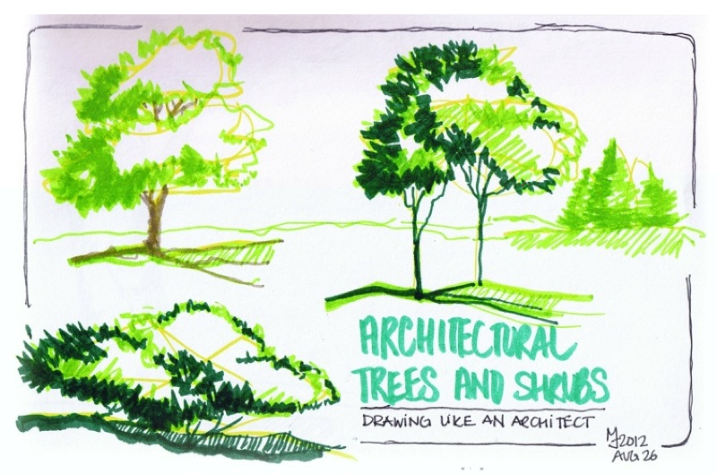 MJ SKETCHBOOK | Book : Pencil Sketching by Thomas C. Wang - Trees