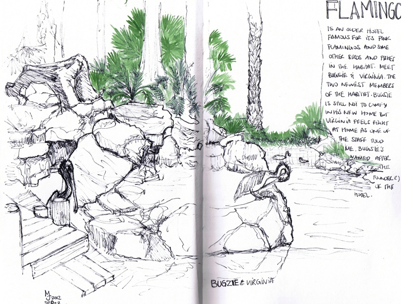 MJ SKETCHBOOK | Urban Sketching - Las Vegas Flamingo Hotel bird habitat