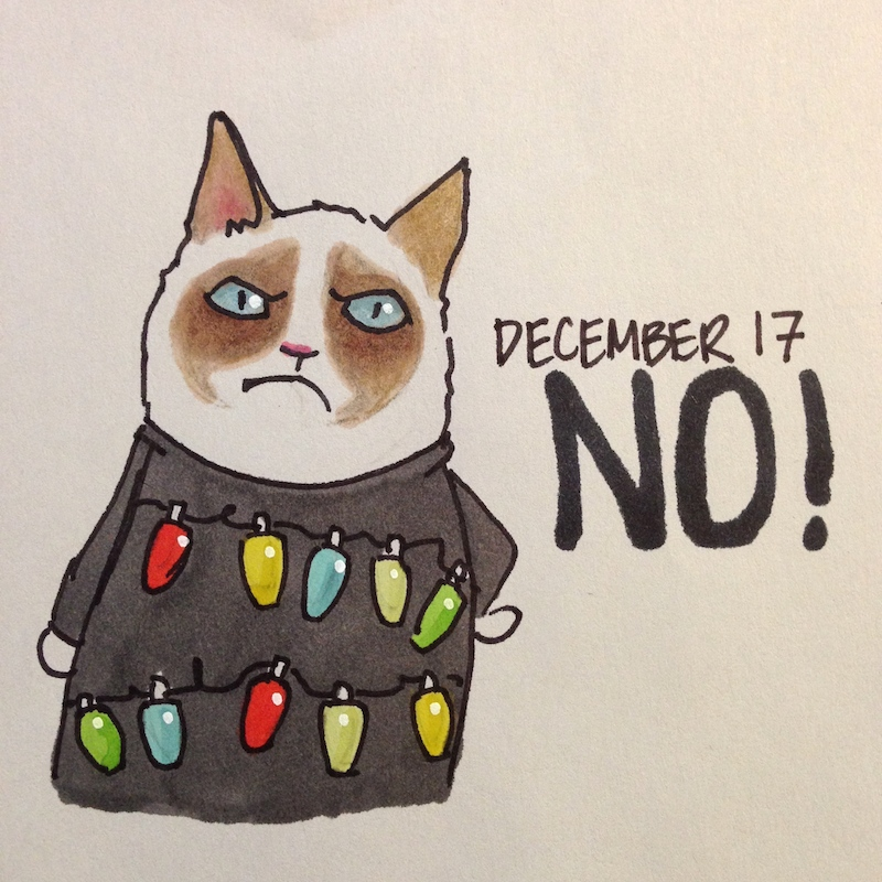 Grumpy Cat in Holiday Sweater, Christmas lights