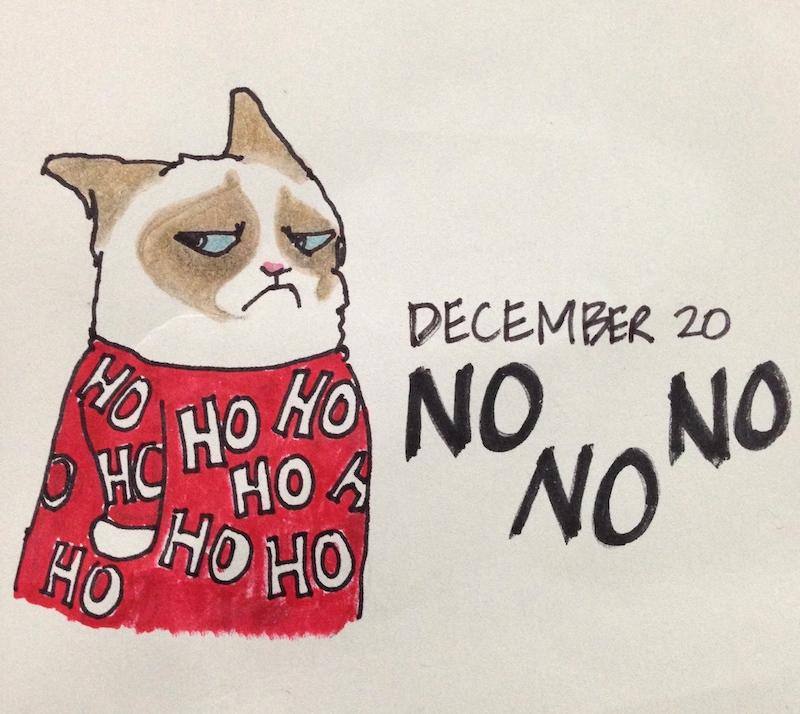 Grumpy Cat in Holiday Sweater, Santa, hohoho