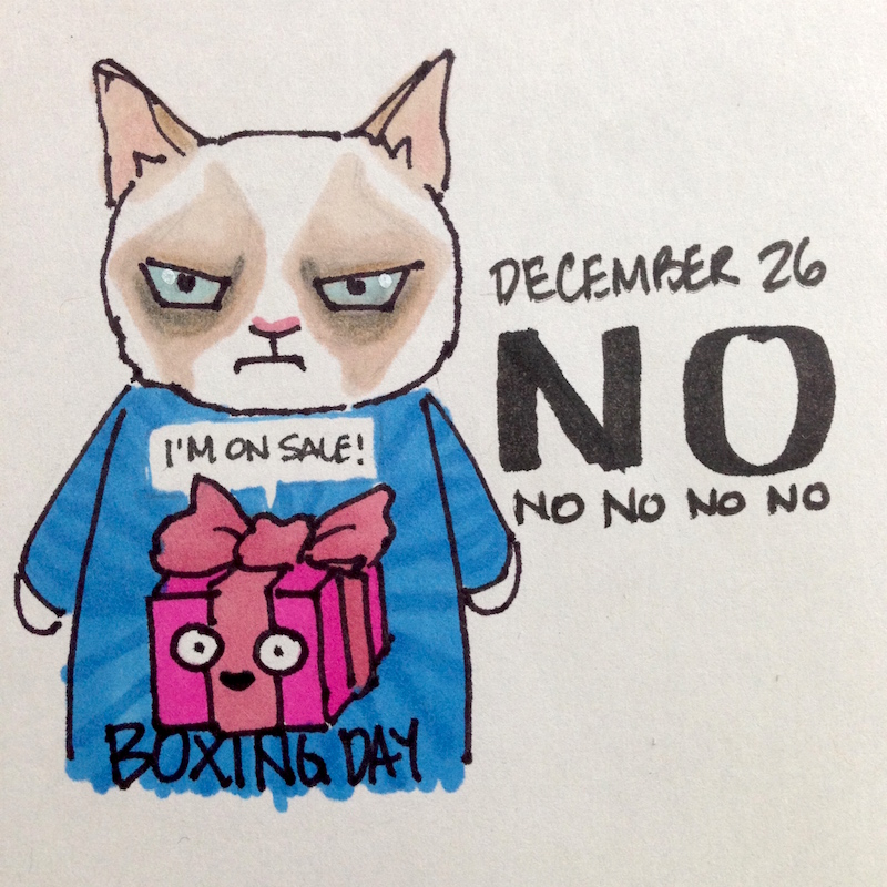 Grumpy Cat in Holiday Sweater, Boxing Day