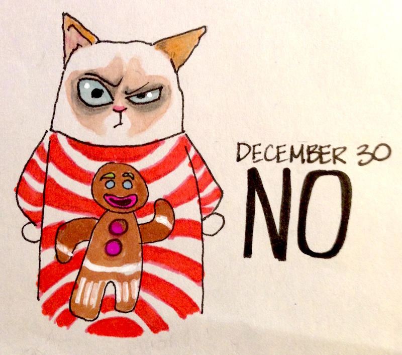 Grumpy Cat in Holiday Sweater, Gingerbread man